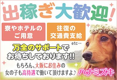 飛田新地求人-ハナミズキ